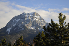 Prs d'Embrun (fredomarseille) Tags: winter mountain snow france alpes marseille pin hiver pic neige provence col sapin sud montagnes sommet alpiniste