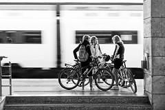 Stazione di Padova - L' Ardua decisione (carlo tardani) Tags: blackandwhite bw treno bianconero biancoenero padova bicicletta veneto vagone blackwhitephotos viaggiointreno nikond3 stazionedipadova elitegalleryaoi mygearandme mygearandmepremium mygearandmebronze mygearandmesilver infinitexposure