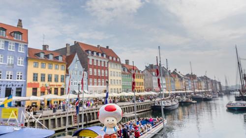 Toad likes Copenhagen