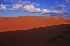 Erg Chebbi (yuyu418) Tags: blue sahara yellow sand desert dune dry camel morocco maroc caravan sanddune merzouga saharadesert ergchebbi