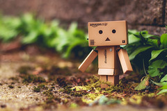 Amongst the Undergrowth (*DollyLove*) Tags: canon 50mm spring bokeh 18 danbo 70d