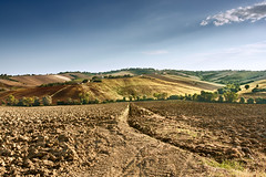 Italy / Landscape / Rural Country - Wounderful Country Scenery (.Gianluca) Tags: blue summer sky brown green nature colors rural landscape italian quiet country silence tranquil
