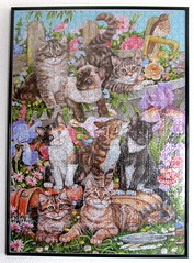 Cats Galore (Debbie Cook) - framed (Leonisha) Tags: framed puzzle frame rahmen jigsawpuzzle