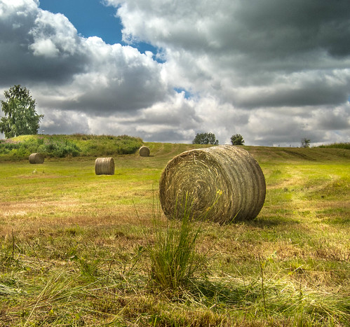 From flickr.com: Farmers Dream {MID-225509}