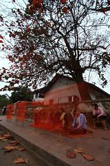 """Luang-Prabang_M_061 (ppana) Tags: """"laos"""" """"vientiane"""" """"pha that luang"""" """"luang prabang"""" """"savannakhet"""" """"pakxe"""" """"xiengkhouang"""" """"plain jars"""" """"mekong river"""" """"kuangsi water fall"""" """"pak ou caves"""" """"mount phousi"""" """"haw pha bang"""" """"wat chomsi"""" chom phet"""" xieng thong"""" mai suwannaphumaham"""" """"vang vieng"""" """"tham phou kham cave"""" """"nam song"""" si saket"""" phra kaew"""""""