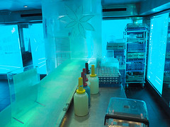 Ice Bar -16 (KathyCat102) Tags: ncl getaway cruise ship icebar