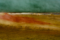 Hell's gate, Rotorua (philippe*) Tags: newzealand abstract art nature colors rotorua activity hellsgate volcanic