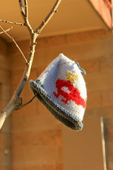 Lost & Found (LittleMok - Lois) Tags: hat found lost australia victoria helicopter kensington knitted hangingfromatree 28jun13