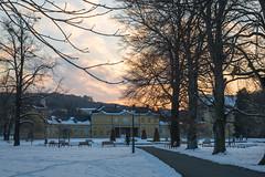 Kuechengarten mit Orangerie (welle23) Tags: trees winter sunset snow germany thueringen gera orangerie kuechengarten