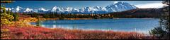Wonder Lake (Ed Boudreau) Tags: autumn alaska landscape fallcolors vista blueskies tundra mountmckinley wonderlake alaskamountains denaliparkroad mygearandme mygearandmepremium mygearandmebronze