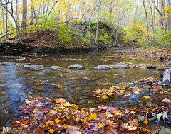Autumn's Beauty (J. Myers) Tags: park justin autumn trees ohio wild orange color fall nature water beautiful leaves yellow america creek canon reflections john river landscape gold leaf october scenery stream glen foliage explore helen american springs bryant 1740mm dayton myers f4l t2i
