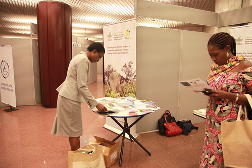 Participants visiting the CGIAR stand