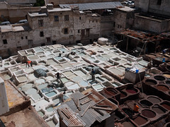 _1180719-2.jpg (sspboyd) Tags: africa honeymoon tour morocco medina guide fes leathertannery chouaratannery