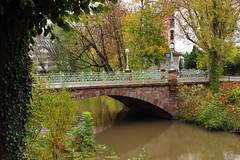 Petit pont (StephanExposE) Tags: pont riviere bridge river arbre tree feuille leaf automne autum strasbourg france canon 600d 1855mm stephanexpose