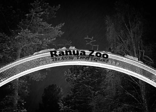 Finland, Ranua, Ranua   50 mm, ISO 12800  ~16Uhr.jpg