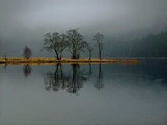 DREICH IN THE TROSSACHS (kenny barker) Tags: trees mist fog scotland day scottish explore trossachs scottishlandscape lochchon olympusep1 welcomeuk panasonic20mmf17asphlens kennybarker
