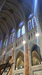 la Cattedrale di Chartres- Transetto