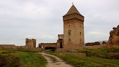 Medieval Heritage in Republic of Serbia (PeQi GVR) Tags: tower art ancient loneliness serbia medieval fortress epic lethargy aristocratic