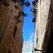 Jaffa walls