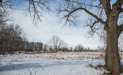 Trees in field_DSC3324 (nkatesphotography) Tags: snow nature landscape outdoors barns scenic farms