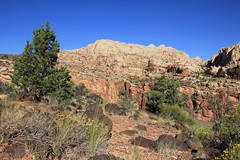 Cohab Trail, Capitol Reef National Park (fly flipper) Tags: arch capitolreefnationalpark cassidyarch fryingpantrail hikingutah cassidyarchtrail cohabtrail