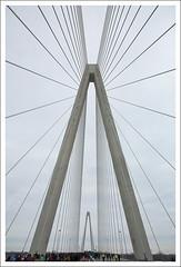 New Bridge Opening 2014-02-08 1 (bobcrowe_com) Tags: bridge illinois memorial stlouis stan missouri mississippiriver opening veterans select musial stanmusialveteransmemorialbridge