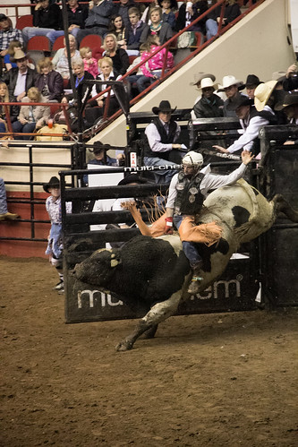 San Angelo Stockshow & Rodeo-1.jpg