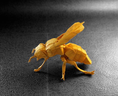 Yellow Jacket - Lang | Origami toys, Paper crafts origami, Origami art | 408x500