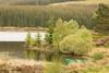 Loch Kinardochy view