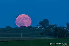 The Blue Moon Rising over Eastern Iowa 7-31-15 (Thomas DeHoff) Tags: blue red moon sony iowa full moonrise a580