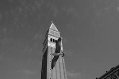 venezia55 (crimaraffi) Tags: bw biancoenero uccelli campanile sanmarco gabbiano venice venezia