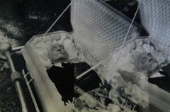 In Repose (Midnight Believer) Tags: death corpse coffin casket graveside doubleexposure weird strange odd peculiar creepy spooky retro 1950s unknown