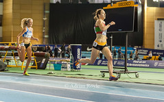 DSC_7784 (Adrian Royle) Tags: sheffield eis sport athletics track field action competition racing running sprinting jumping throwing britishathletics nikon indoor indoorathletics ukindoorathletics 2017