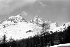 04a3371 25 (ndpa / s. lundeen, archivist) Tags: nick dewolf nickdewolf bw blackwhite photographbynickdewolf film monochrome blackandwhite april 1971 1970s 35mm europe centraleurope switzerland swiss alpine alps graubünden grisons stmoritz easternswitzerland suisse schweitz mountains peaks snow snowy snowcovered skiresort skiarea skislopes landscape trees swissalps