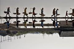 off to load (PawL23) Tags: petchaburi saltfields reflection thailand silhouette salt asia