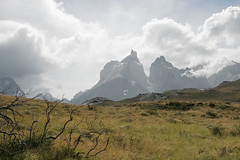 Torres del Paine (Roelie Wilms) Tags: torresdelpaine chileanpatagonia chile chili patagonia patagonië pehoé