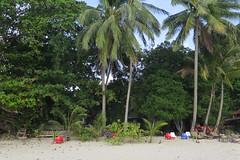 """Notre hôtel bien caché sur Pulau Kapas ! <a style=""""margin-left:10px; font-size:0.8em;"""" href=""""http://www.flickr.com/photos/83080376@N03/33362822941/"""" target=""""_blank"""">@flickr</a>"""