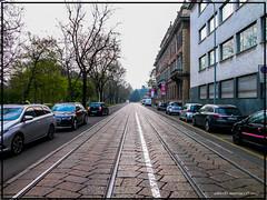 Milano Via Palestro (alberto martucci) Tags: milanoitaliaitalymilanmailamd leica digilux2