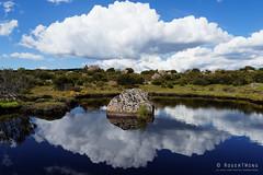 20170301-47-Rock in tarn (Roger T Wong) Tags: australia greatpinetier np nationalpark sel1635z sony1635 sonya7ii sonyalpha7ii sonyfe1635mmf4zaosscarlzeissvariotessart sonyilce7m2 tasmania wha wallsofjerusalem worldheritagearea alpine bushwalk camp clouds hike landscape reflectionrock trektramp walk