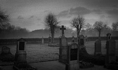 Where all things come to an end (Rosenthal Photography) Tags: asa400 20170204 ff135 anderlingen städte friedhof ilfordhp5 bw 35mm analog olympus35rd dörfer siedlungen graveyard graves landscape olympus ilford epson v800 mist fog