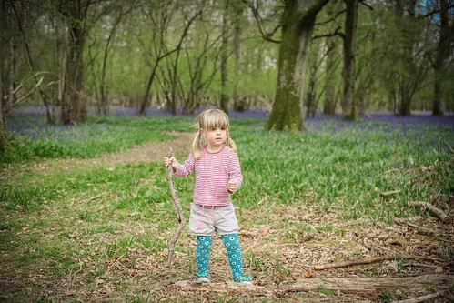 Eleanor and the bluebells