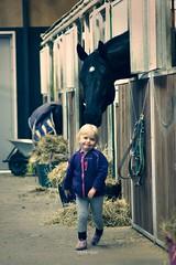 Bye Horse! (vesterskov) Tags: horses horse barn photography photo foto ride bokeh daniel sony riding f western pro 28 mm stable f28 dt slt ssm hest corel fotografi a77 horsemanship 1650 bibble heste stald aftershot 1650mm vesterskov slta77 slta77vq a77vq 281650 f28asd