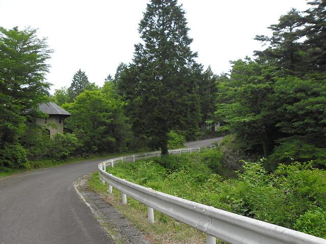 初日の夜中、出たんです!!山荘までの公道のガードレールの向。 