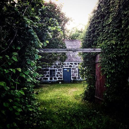 Hidden behind the green