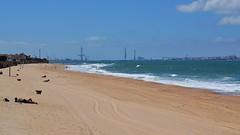 Playa de El Buzo (Emilio J. Rodrguez-Posada) Tags: ocean blue sea costa water azul puente coast mar agua playa cadiz junio oceano pepa pilones buzo 2013 pilonesdecadiz puentedelapepa juniode2013