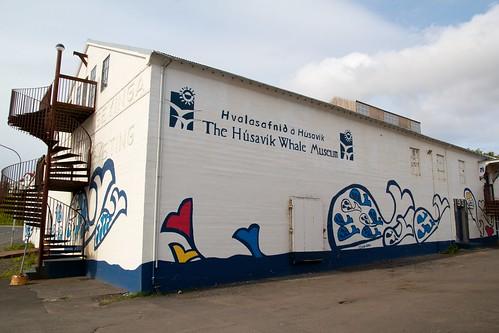 Husavik whale museum