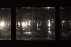 pane in the ass. (stevenbley) Tags: newyork rot abandoned window glass brooklyn industrial decay bees sticky historic sugar urbanexploration domino refinery urbanexploring dominosugar americanhistory urbex molasses rawsugar stickyfeet guerillahistorian dreadfulheat