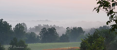 Foggy Landscape (Rick Smotherman) Tags: park wood longexposure flowers trees summer sky nature field leaves clouds canon garden landscape outdoors morninglight cloudy hiking overcast august 7d cloudysky canon7d canon1585mmlens