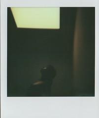 shadow (myworldmyvision 2010) Tags: light shadow bw me girl fashion naked polaroid one model sara emotion ombra young bn ombre sensual step sin luce lilith buio impossible nudo emozioni seno modella peccato sonnessa