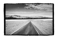 Joshua Tree 2 (Phil Rose) Tags: sand desert joshuatree dirt kickstarter philrose philrosephotography